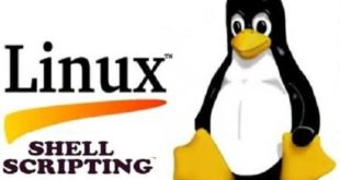 create-shell-or-bash-script-for-cron-job-in-linux